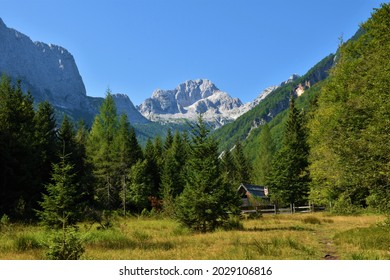 View of Bavski grintavec mountain in Zadnja Trenta valley in Julian alps and Triglav national park, Slovenia with a meadow and a wooden hut in front of a coniferous larch and spruce forest - Shutterstock ID 2029106816
