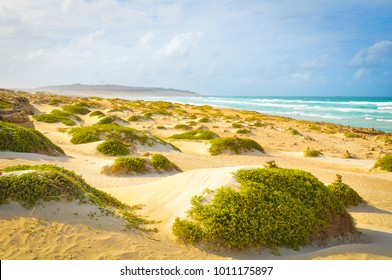 View of beach in Boa Vista, Cape Verde