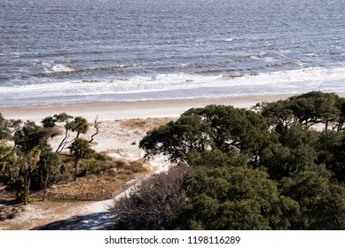 View of a beach on the Atlantic Ocean and the canopy of trees that make up part of the maritime forest in the Lowcountry at Hunting Island state park in South Carolina USA.