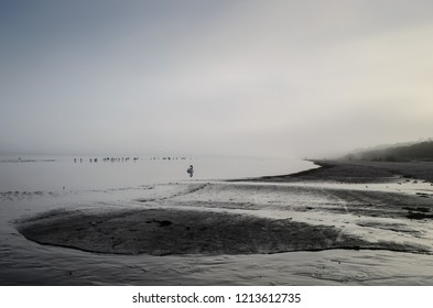A view of a beach on a misty day in Autumn, Latvia, Jurmala