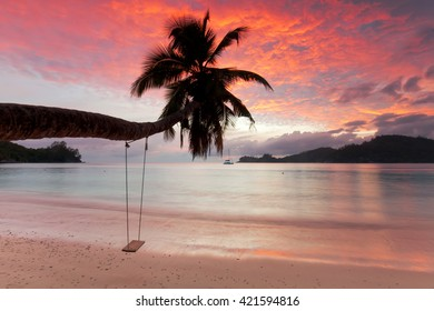 a view of a beach with palm trees and swing at sunset, seychelles, Mahe