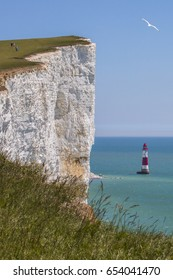 A view of the Beachy Head chalk headland in East Sussex, UK.