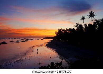 View of the beautiful beach on Panglao Island, Bohol
