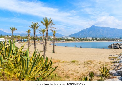 View of beautiful beach with palm trees in Marbella near Puerto Banus marina, Andalusia, Spain