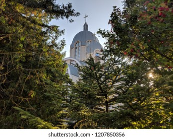 view of a beautiful church steeple through the trees
