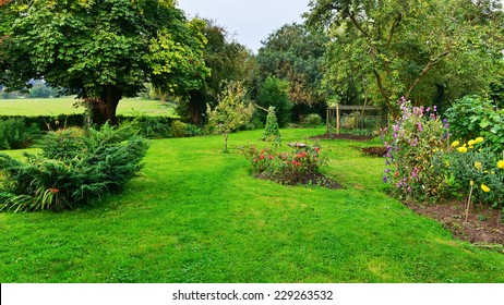 View of a Beautiful Domestic Garden in Summer
