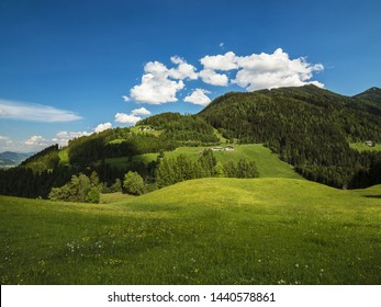 View of beautiful landscape in the Alps with fresh green meadow