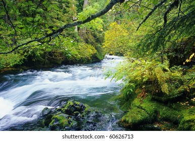View of the beautiful McKenzie River in central Oregon.