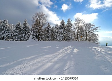 View of beautiful nature in snow winter season on the mountain at Ice monster Zao Park, Japan