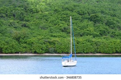 View of the beautiful sail boat or yacht docked next to green island.