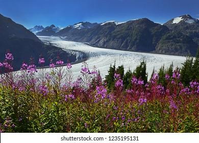 View of beautiful Salmon Glacier, British Columbia, Canada