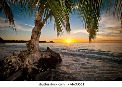 The view of a beautiful sunset from the beach underneath a palm tree on one of the islands of the Mentawai in West Sumatra, Indonesia.
