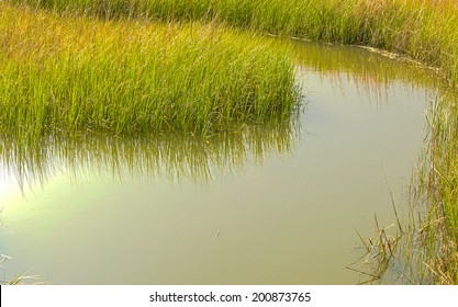 A view of a bend of Shem Creek as it winds it way through a salt water marsh of Mount Pleasant, South Carolina.
