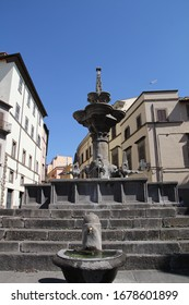 View of big fountain in viterbo city, Italy