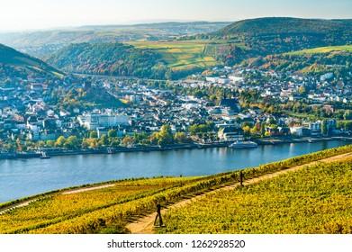 View of Bingen am Rhein from Rudesheim vineyards in the Upper Middle Rhine Valley, Germany