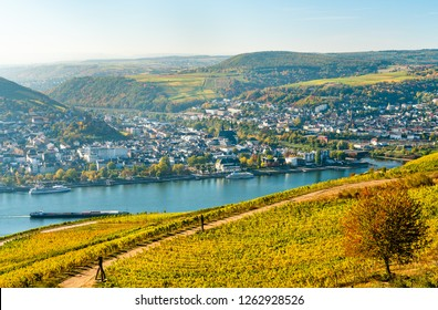 View of Bingen am Rhein from Rudesheim vineyards in the Upper Middle Rhine Valley, Germany