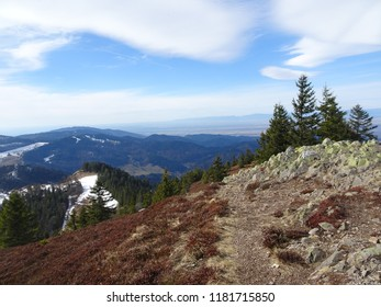The view of the Black Forest (Hoch Schwarzwald), Germany in early spring in good weather
