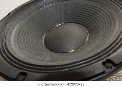 view of a black membrane speaker