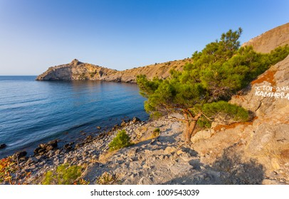 "View of Black Sea bay with rocky shore in distance, stones and south pine in front and ""warning rockfall"" white inscription lit with low sunrise light under clean blue sky at sunrise in Crimea"
