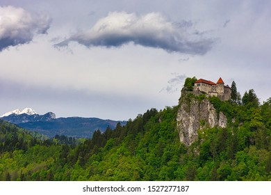 View of Bled Castle, Slovenia surrounded by spring forest and the Alps on background