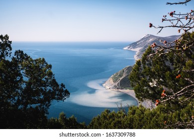 View of the blue Black Sea from Mount Soldatskaya in the village of Sukko, Krasnodar Territory. The water area at the foot of the Caucasus Mountains. View through a mountain juniper forest