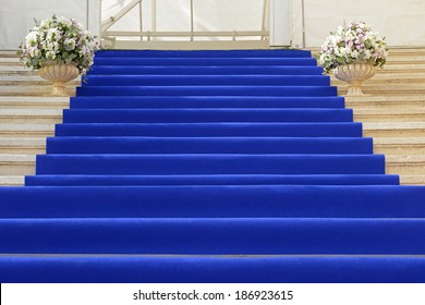 View of a blue carpet staircase in an entrance of the building.