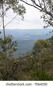 View of the Blue Mountains, New South Wales, Australia