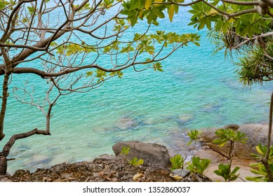 View of the blue sea water and stones through the branches of trees