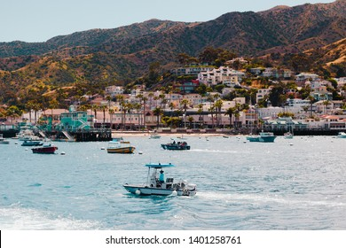 View from Boat on Catalina Island