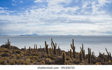 View of the Bolivian salt flats from Fish Island