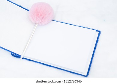View of book with blank page for blessing to wedding couple.