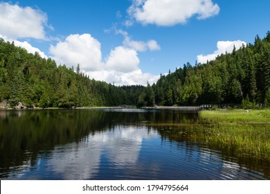 View of a boreal forest and a lake, at the Aiguebelle national park, Canada