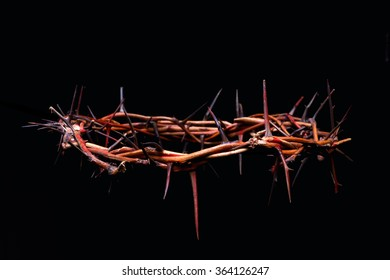 view of branches of thorns woven into a crown depicting the crucifixion on an isolated background