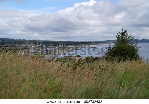 view-bray-town-co-wicklow-600w-180273248