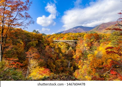 View of a bridge in crossing the Naruko Gorge near Sendai, Miyagi, Japan with trees with autumn color maple leaves all over the mountain in a sunny day