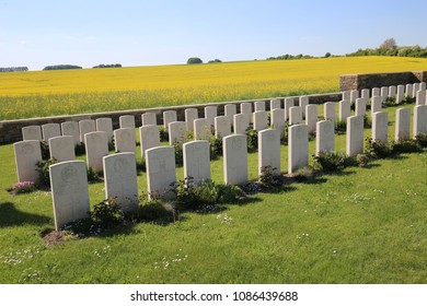 View of the british military cemetery of bellicourt, in aisne department, France. May, 8, 2018. Rows of white vertical graveyards among green grass. Colza field in background. Blue sky at the horizon