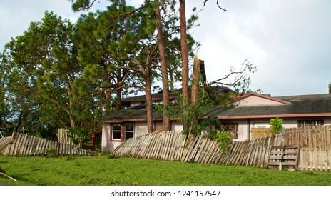 View of broken, blown over fence and broken tree tops after hurricane irma.  Tree has fallen on house.
