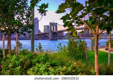 View of Brooklyn Bridge and lower Manhattan from Brooklyn Bridge Park across the East River
