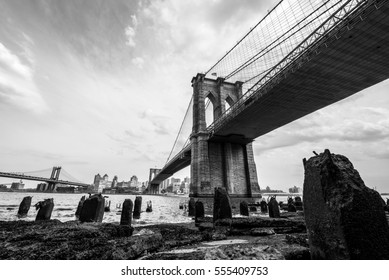 View of Brooklyn Bridge, NYC