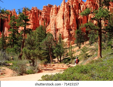 view of Bryce Canyon track bright red ground, pine trees and tourist
