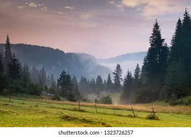 A view of Bulgarian mountain