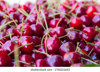 view of a bunch of Italian sweet cherries