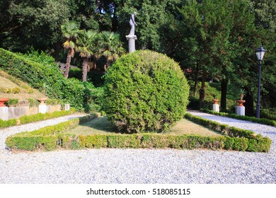 View of the Buxus in the Miramare park, Trieste