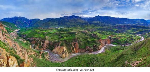 View of Canyon Colca, Peru