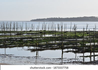 View of the Cap-Ferret oyster beds with the Arcachon Bay in the background