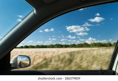 view from car window on wheat field
