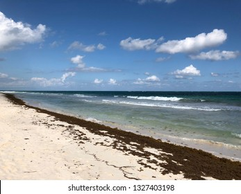 View of a Caribbean beach in Tulum, Mexico