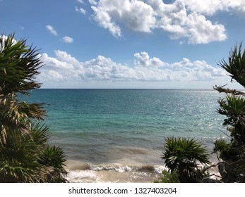 View of the Caribbean Sea and tropical nature