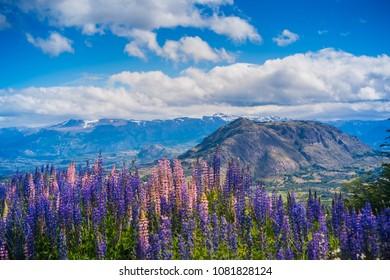 View at Carretera Austral, Patagonia - Chile.