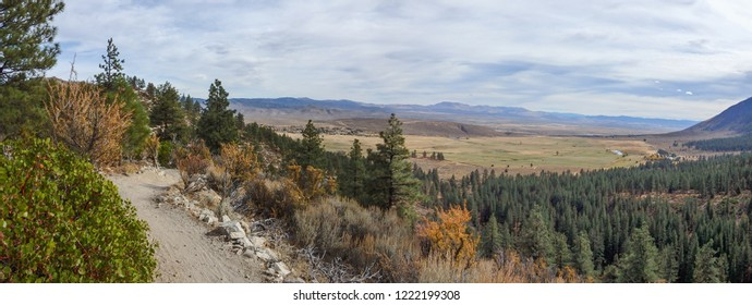 View of Carson Valley single track trail, and forested foothills of the Sierra Nevada Along Clear Creek Trail
